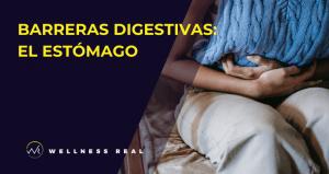 El estómago y sus barreras digestivas